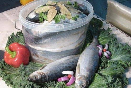 Вкусная малосольная селедка в домашних условиях - новый рецепт с фото 2