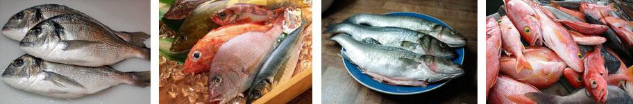 рецепты из морской рыбы