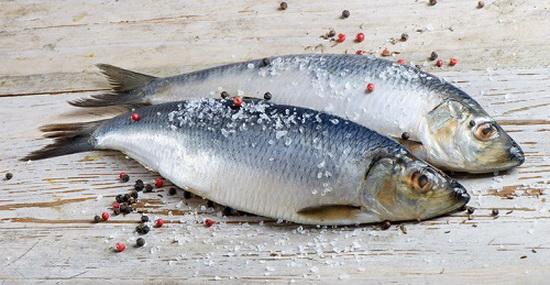 Сельдь соленая в домашних условиях - как быстро солить рыбу 2